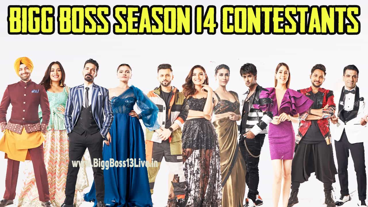 bigg boss 14 contestants
