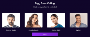 Bigg Boss 14 Online voting for 13th Week